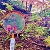 るんちゃんとゆるハイク♪<<秩父札所巡り第6回目 ① >>