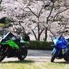 ツーリングに行く 『下北山温泉 きなりの湯』 ~いつもと違い、桜の桃源郷でした~