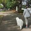 駒沢オリンピック公園パート2