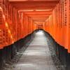 【伏見稲荷の千本鳥居】 日本の美を感じる 京都半日観光
