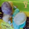 【歌詞訳】SUMIN+Zion.T / 汚く(DIRTY LOVE)
