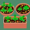 生ごみ処理機で肥料を作る-vol.13