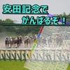 【競馬】『2017・GⅠ安田記念の予想 -難解レースに挑む-』