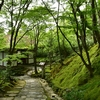 京都 嵯峨野 常寂光寺の仁王門から本堂にかけての景色は、上から眺めても 下から眺めても 真ん中で眺めてもいとをかし。(Kyoto, Jojakko-ji)