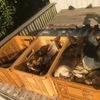 今朝も朝から筍掘り・・・・・。