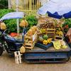 じゅんぺいカメラ~パラグアイの街並み+海外での育児