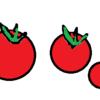 【シニア犬・老犬】トマトをおやつに食べさせています