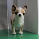 chihua56's blog チワゴロウのブログ