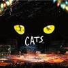 劇団四季の『キャッツ』を見に行った話