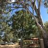 オーストラリアの天然温泉!?ラウンドのすゝめ