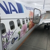 【ANA】772便 B737-800 新千歳✈️伊丹 搭乗記とANAダブルマイル当選