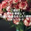 【週記】連休を堪能して仕事に右往左往した1週間 2021/5/3-9