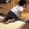 1歳児にメロメロ