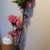ちょっと前に行ったカフェのお花