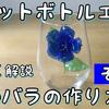 【その3】ペットボトルで青い薔薇を作る How to make blue rose no.3