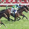 日本ダービー2017出走有力馬の現時点での評価 まずは皐月賞組