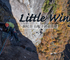 【錫杖岳】Little Wing