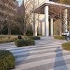 春は植木の出荷時期 東京オリンピックで都市緑化