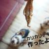 レンジで簡単♡犬の手作りオヤツ【骨付きチキン】