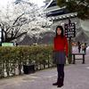 桜開花予想 熊本市で25〜26日