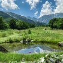 都会より田舎が好き。