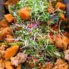 挽肉とかぼちゃ、ししとうの甘味噌煮