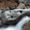 戦慄!群馬県南牧村の最奥で密かに眠る人面石に会ってきた!