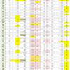 新型コロナウイルス、都道府県別、週間対比・感染被害一覧表 (6月4日現在)