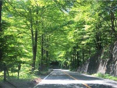 軽井沢1泊旅行〜カーリング教室、美味しいパン屋さん、源泉かけ流しトンボの湯〜