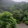 群馬 上野村 竜神の滝キャンプ場④