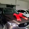 オーストラリアで車を購入