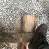 薪を切りまくったよ!