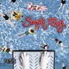 夏になると聞きたくなる懐かしい西海岸系ロックの一つ Sugaar Ray / Someday