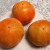 今秋最後の柿