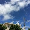 沖縄土産♡おいしいとうわさのこんぺん♡