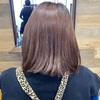 新潟 美容室 パドトロワ 極上のヘアカラー カラーでお困りの方はご相談を。