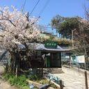 gokurakujiclinic's blog