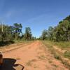 オーストラリア再訪・中篇その二 ジョワルビナ