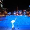 札幌市 ホワイトイルミネーション 2010 / 聖なる夜を