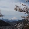2017年4月16日 岩殿山~お伊勢山(日帰り)