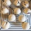 【ベターホーム】「わたしの和菓子」から小麦まんじゅう作ってみた