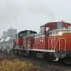 衣浦臨海鉄道に乗り入れたDD51白ホキを撮る その1 冬の東海地方 撮り鉄遠征⑩