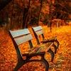 身体の不調をリセットし、気持ちいい季節を快適に