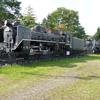 北見市 SL広場のSL保存機 C58 119とD51 444