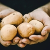 """飢餓を救う""""じゃがいもの可能性""""を世界に広めたグッドアイデア"""