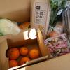 """「らでぃっしゅぼーや」の宅配野菜で""""本当の野菜の味""""を食卓へ"""
