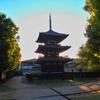 ひっそりと佇む美しい小塔【興福寺「三重塔特別公開」ならびに「弁才天供」】(奈良市)
