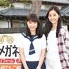 新木優子 「チア☆ダン」で土屋太鳳の姉役に抜擢「大人になっちゃったな」