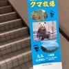登別クマ牧場へ行ったのは北海道でクマに出会っていないから