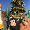 とくしま動物園のクリスマス